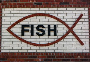 FISH in bricks